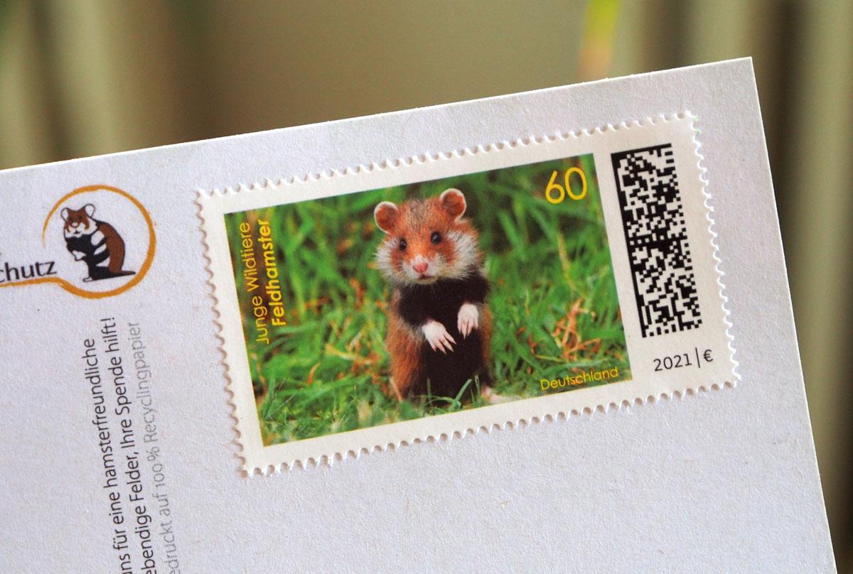 Feldhamster-Briefmarke 2021: Junger Feldhamster