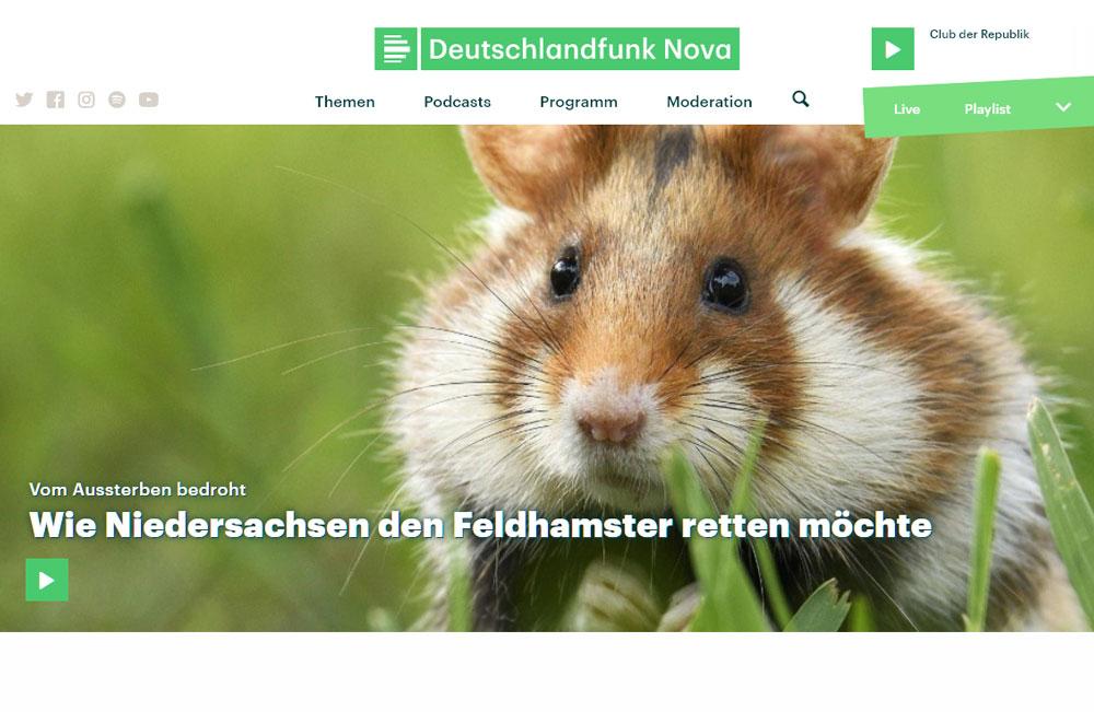 Radiobeitrag zum Feldhamsterschutz in Niedersachsen | Screenshot DLF Nova